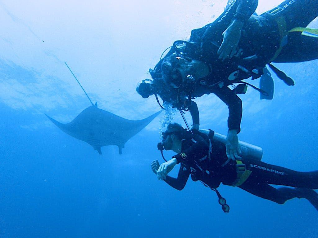 bapteme de plongee Raie Manta Nusa Penida Bali