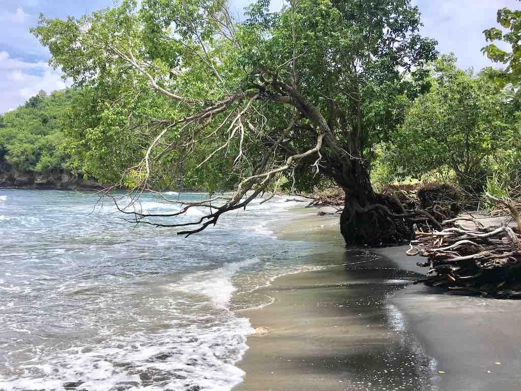 Gamat Bay Nusa Penida plage