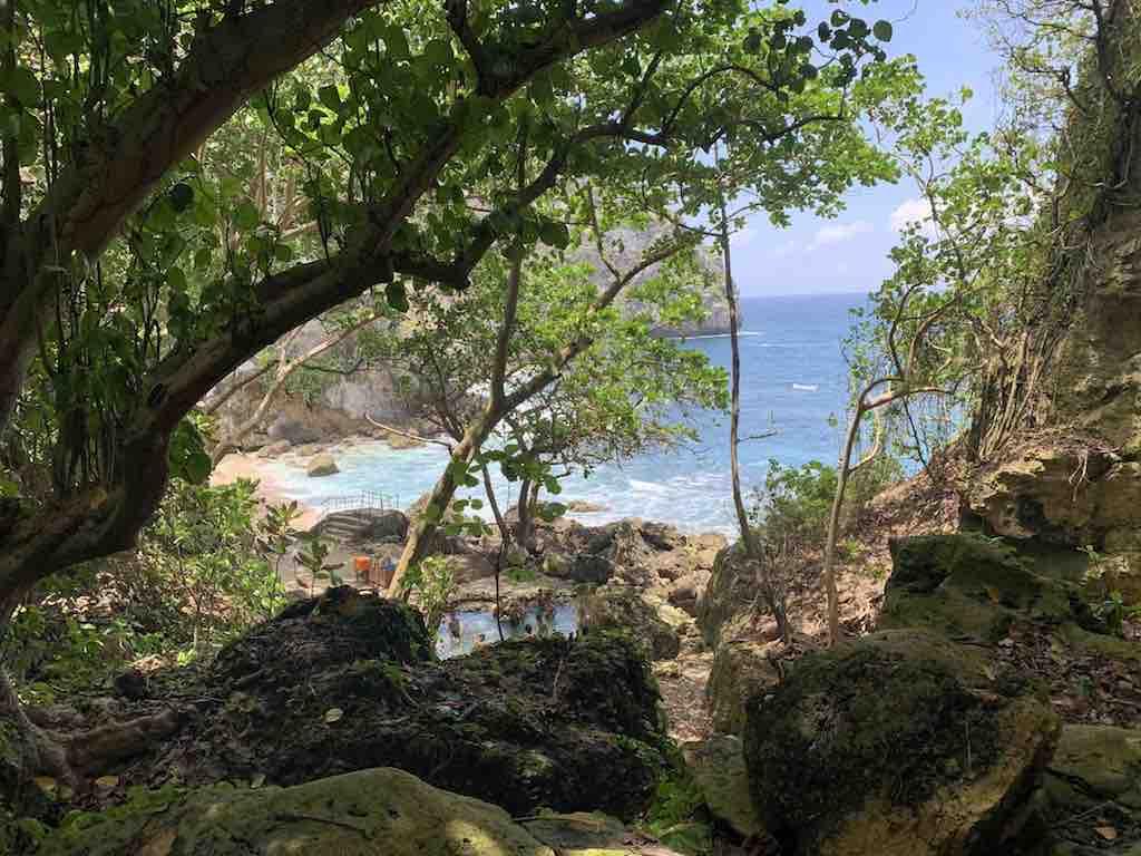 Temeling foret primaire et plage Nusa Penida Bali